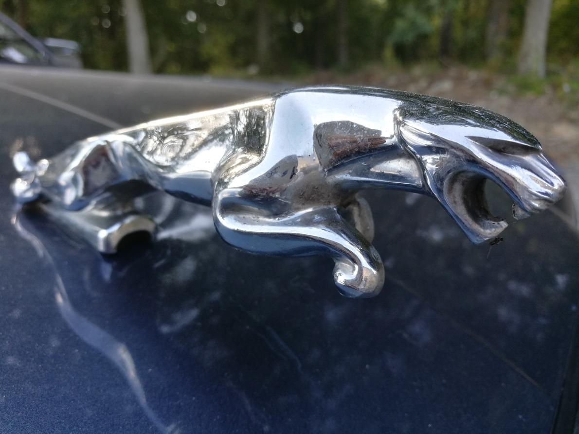 Rénovation intérieur cuir Jaguar XJ40